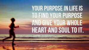your-purpose-in-life-is-to-find-your-purpose-and-give-your-whole-heart-and-soul-to-it